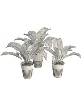trio-de-plante-interieur-3d-filaire
