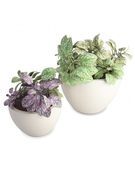 plantes-en-pot-interieur-3d