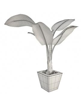 collection-de-plantes-et-fleurs-3d-bananier-filaire