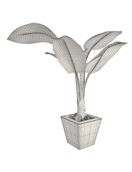 collection-plants-flowers-3d-banana-tree-wireframe