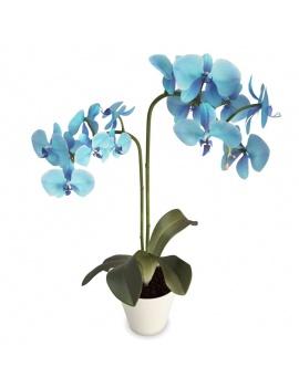 collection-de-plantes-et-fleurs-3d-orchidee-bleue