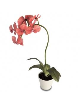 collection-de-plantes-et-fleurs-3d-orchidee-rouge