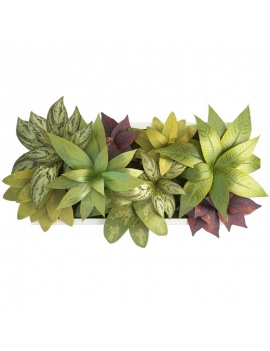 collection-plants-flowers-3d-plant-frame5