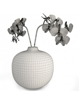 colored-decorative-objects-and-orchids-3d-orchids-wireframe