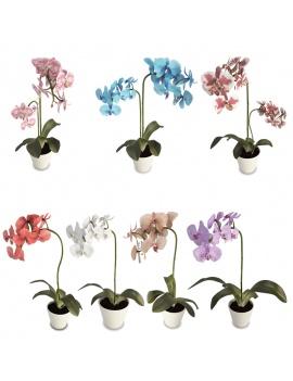 declinaison-orchidees-3d