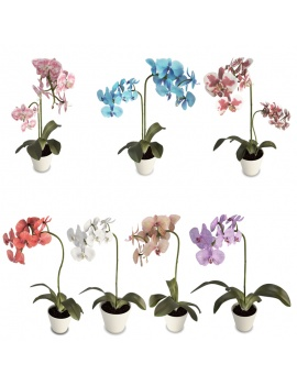 orchids-collection-3d
