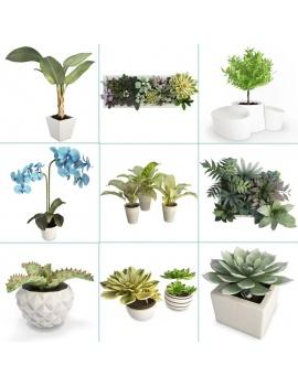 collection-de-plantes-et-fleurs-3d-couverture